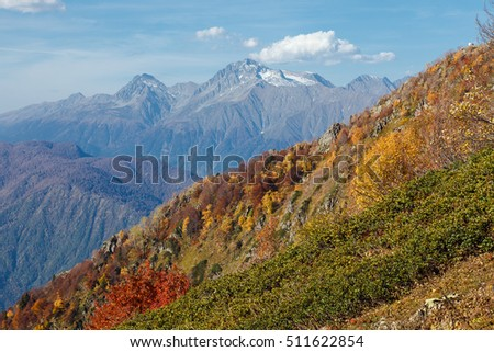 "Russia, Sochi, resort ""Krasnaya Polyana"". In the mountains of the Caucasus come autumn. Vibrant fall colors of alpine meadows and foothills."