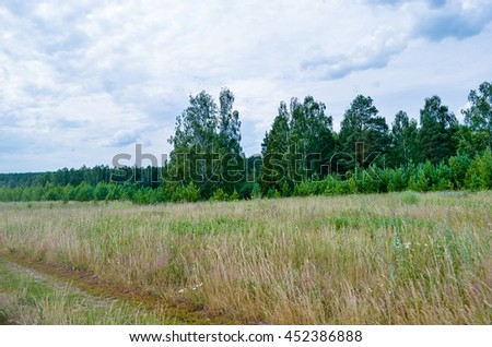 Russian field and forest