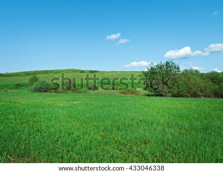 Russian spring meadow.Arkhangelsk oblast.Russian North.