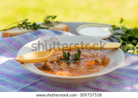 Russian style cabbage soup in a plate and a hand carved wooden spoon - stock photo