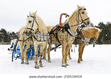 "Russian traditional horse transport. ""Troika"""