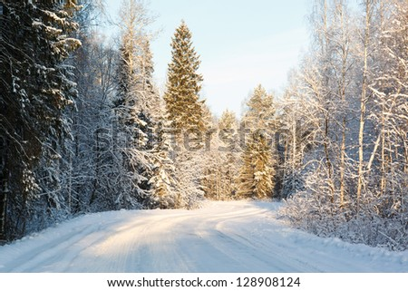 russian winter road and trees in snow on a background of blue sky