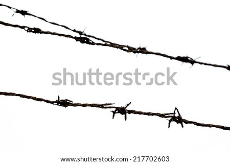 Rust Barbed Wire on white background. in focus only front barbed wire.Back barbed wire out of focus.