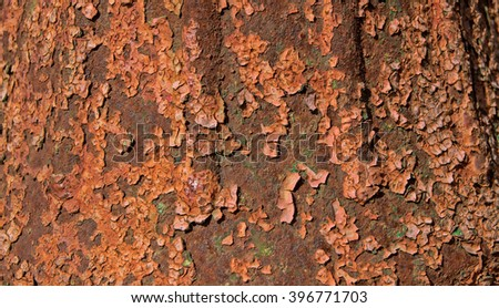 rusted objects background