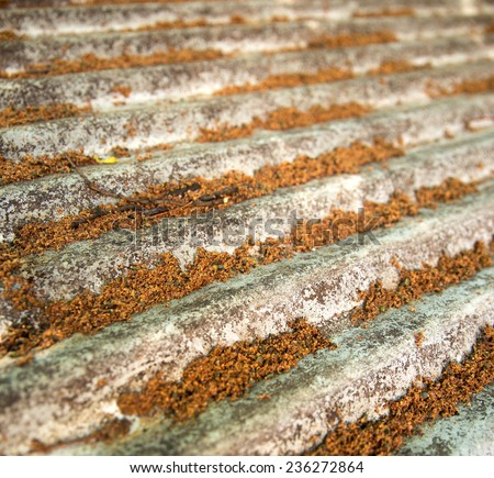 Rusted steel roof with tree seeds and bits - stock photo