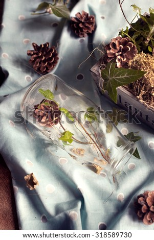 Rustic autumn decorations: pine cones and green leaves set in a wooden box and a glass bottle. Natural light photo. Toned photo. Shallow focus. - stock photo
