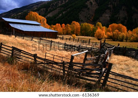 Rustic barn and fall aspens in central Idaho - stock photo