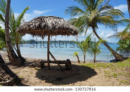 Rustic bench with palm leaves thatch umbrella and coconut trees on the shore of the Caribbean sea