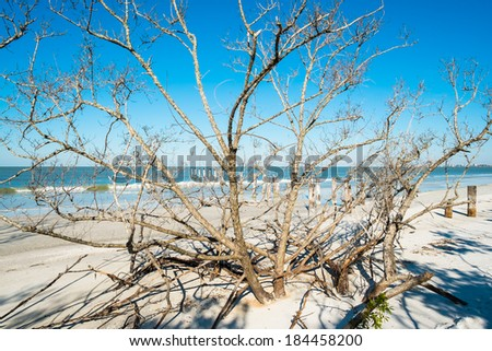 Rustic decaying pier along Fort Myers Beach on the west coast of Florida. - stock photo