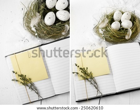 Rustic dual image of an open notebook with copy space and bird's nest with speckled white eggs against a white painted wood. Concept image for recipes, notes, memos or Easter. Copy space. - stock photo