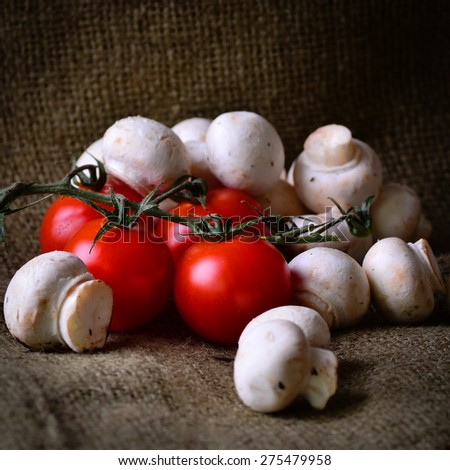 Rustic freshly picked tomatoes and mushrooms. - stock photo