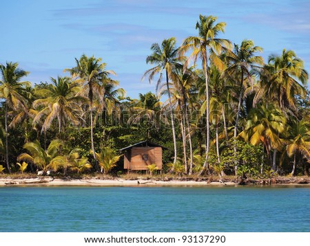 Rustic hut on a tropical beach with coconut palm trees - stock photo