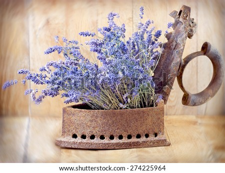 Rustic iron (old iron) and dry lavender - stock photo