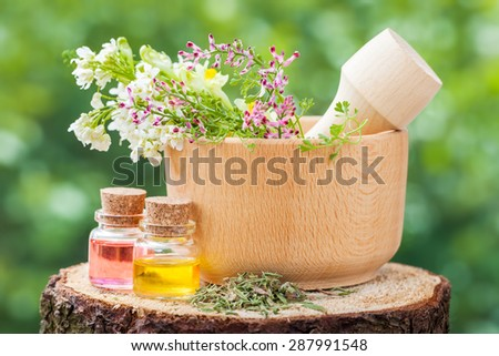 Rustic mortar with healing herbs and bottles with essential oil on wooden stump outdoors. - stock photo