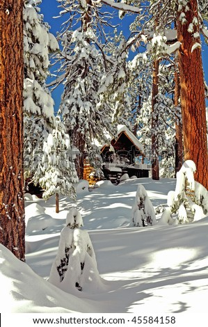 Rustic mountain cabin surrounded by snow, trees - stock photo