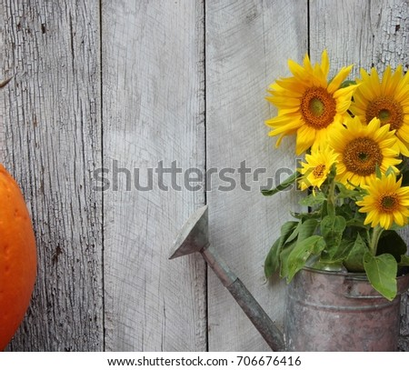 Rustic Summer Or Fall Background