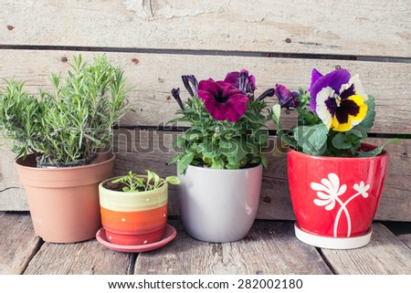 Rustic table with flower pots - stock photo