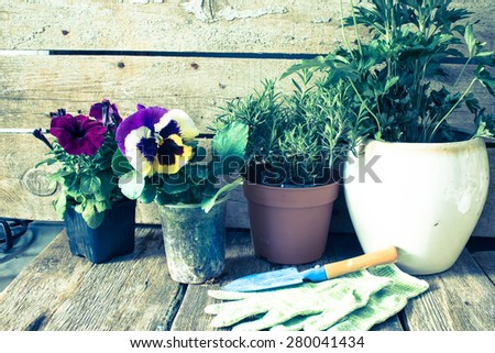 Rustic table with flower pots, potting soil, trowel/retro filter - stock photo