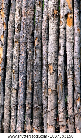 Rustic Wooden Poles Form Background Image Stock Photo Royalty Free