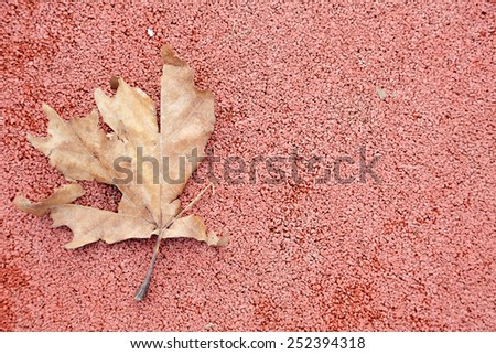 Rusty autumn leaf on red background