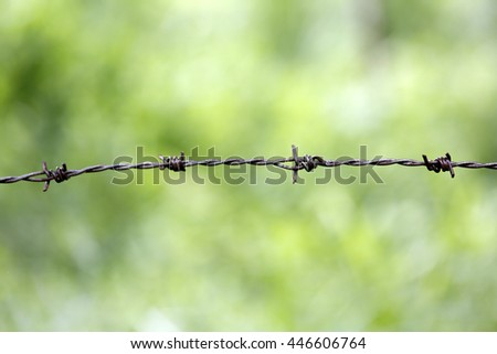 Rusty barbed wire - stock photo