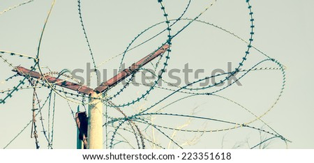 Rusty barbed wire against blue sky. A tree with bare twigs at background. War and imprisonment concepts. Aged photo. - stock photo