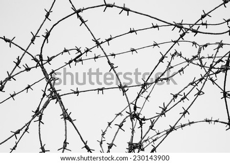 Rusty barbed wire against blue sky. War and imprisonment concepts. Aged photo. Black and white. - stock photo
