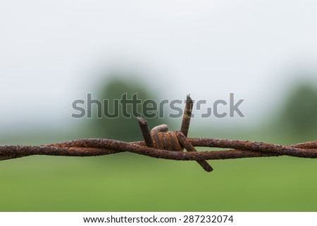 Rusty, barbed wire in front of a meadow. - stock photo