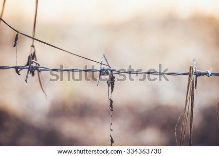 Rusty barbed wire, vintage color tone - stock photo