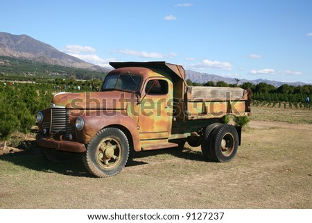 Rusty dump truck parked on a commercial Christmas tree farm open for business