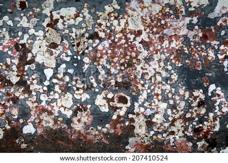 rusty paint peeling - stock photo