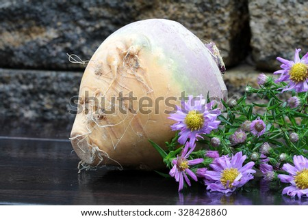 rutabaga and  ingredients for a stew - stock photo