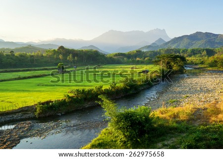 Sabah North Borneo Malaysian landscape with rice field,river and Mount Kinabalu at far background during morning. - stock photo