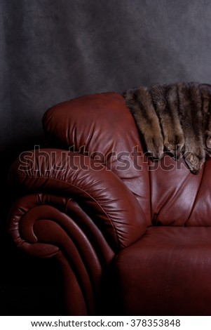sable fur and chair - stock photo