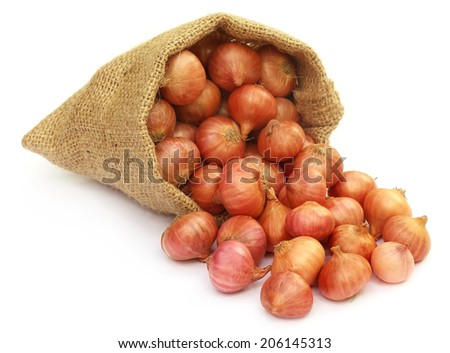 Sack with onion over white background