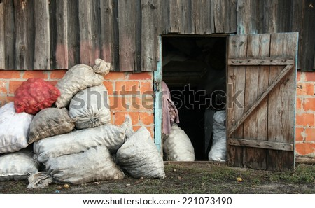 Sacks of potatoes at the open door of the rural barn - stock photo