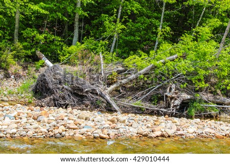 Saco river bed