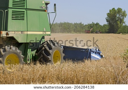 SACRAMENTO, CA, USA -  JUNE 17, 2014: combine harvester cuts through a field of rice in Northern California which is suffering a drought and water use restrictions.