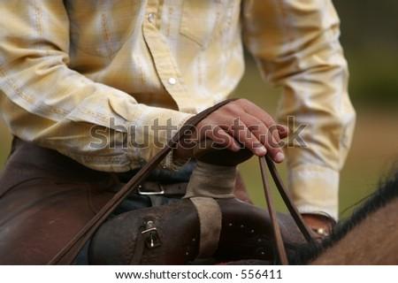 Saddle Horn - stock photo