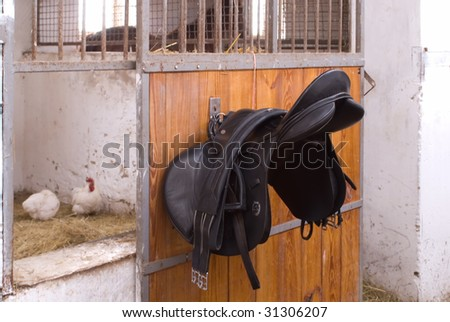 Saddle of a horse on background stable