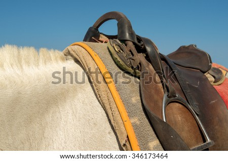 Saddle on a donkey on the island of Santorini in Greece. - stock photo