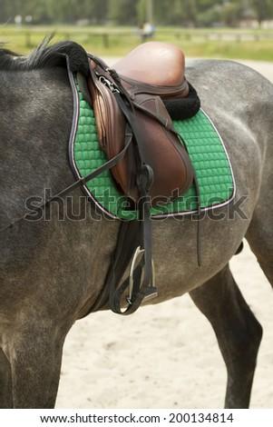 Saddle on a horse. - stock photo