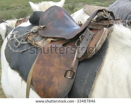 saddle on horseback - stock photo