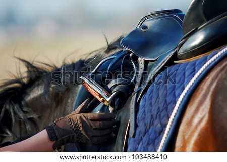 Saddle with stirrups on a back of a horse - stock photo