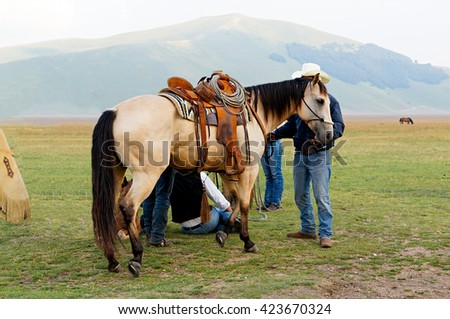 Saddled horse Leather vintage saddle with steel stirrups. Meadow, a plateau among the mountains of Italy. Castelluccio. - stock photo