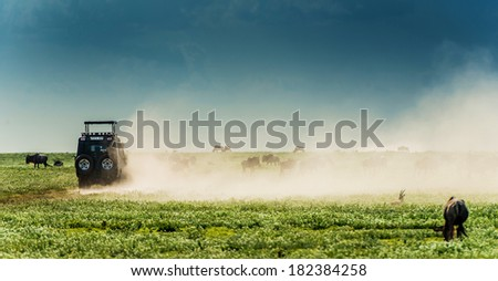 Safari car driving dusty road in Africa - stock photo