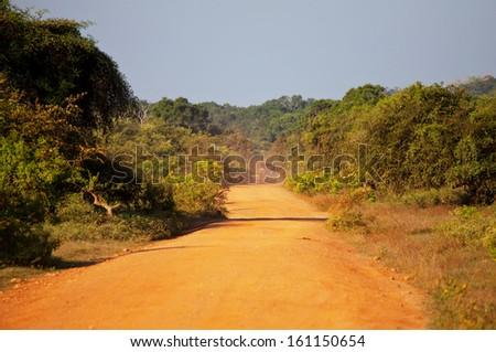 Safari on Sri Lanka - stock photo