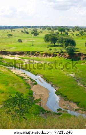 safari/river/ - stock photo