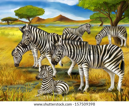 Safari - zebras - illustration for the children - stock photo