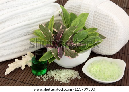 Sage herb leaf varieties in a porcelain mortar with pestle, white towels, towel sponge, coral shell, aromatherapy spa essential oil bottle and bath salts over bamboo background. - stock photo